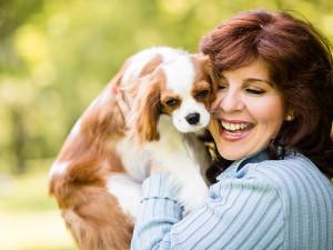 Dlaczego psy są najlepszym przyjacielem człowieka?