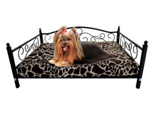 Czy pozwalać zwierzakowi spać w łóżku?