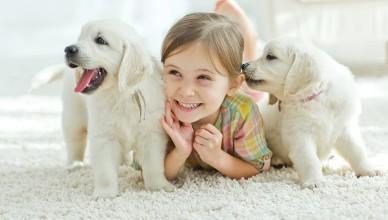 Jak nauczyć dziecko opieki nad zwierzętami?