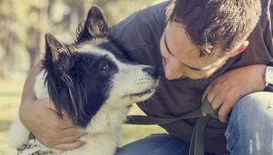 Agresja u psa skąd się bierze i jak sobie z nią radzić?
