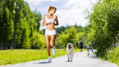 pies_jogging