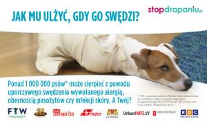Uporczywe drapanie a problemy behawioralne u psów