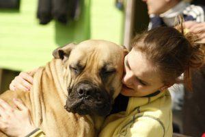 Jak pies okazuje miłość? 4 oznaki, że Twój pies Cię kocha