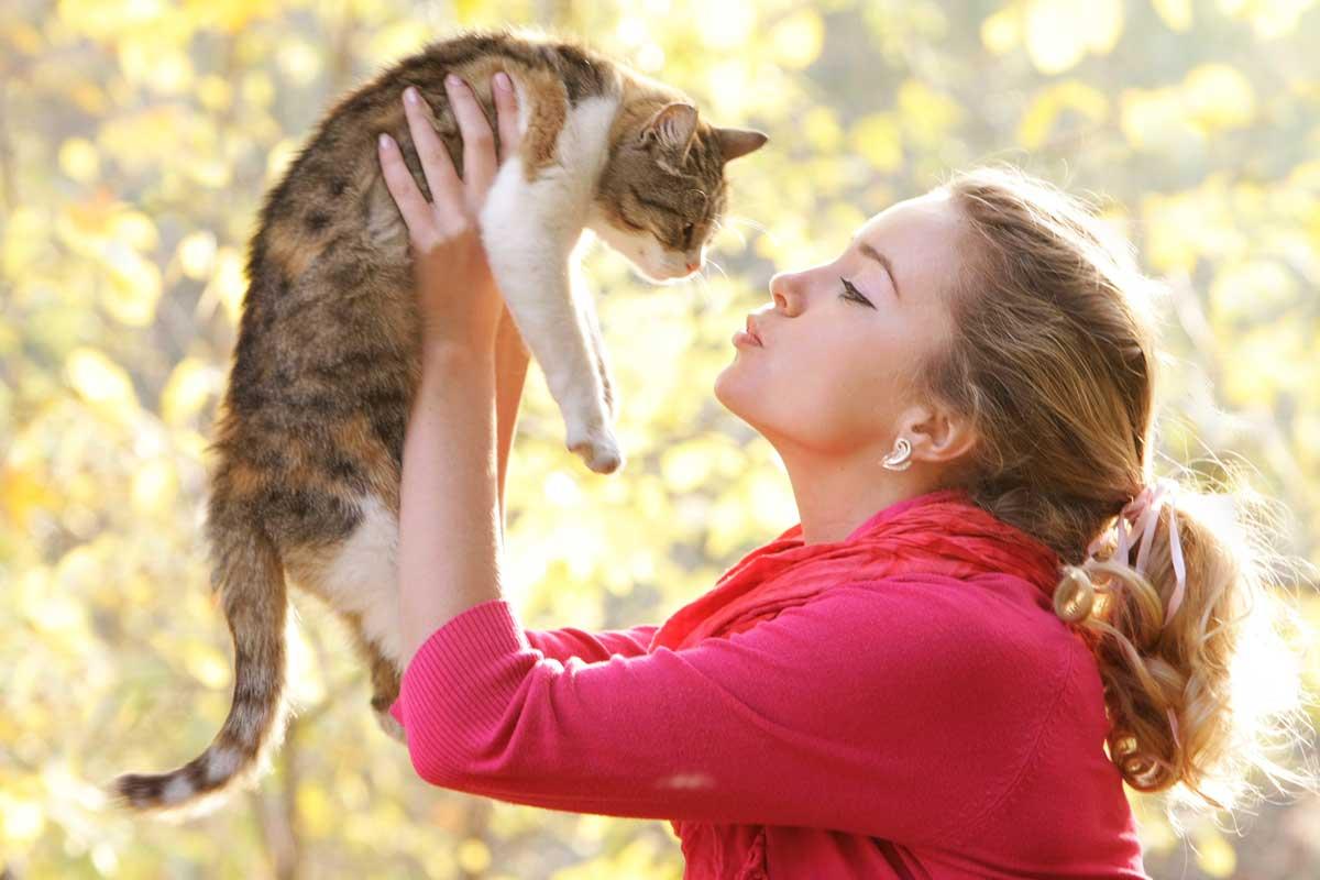 Jaki kot będzie dla ciebie odpowiedni