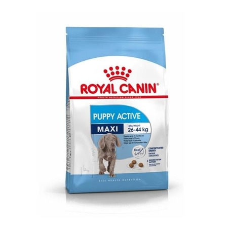 ROYAL CANIN Maxi Puppy Active