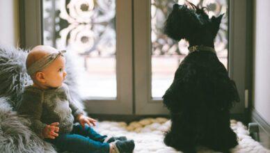 rasy psów dla dzieci