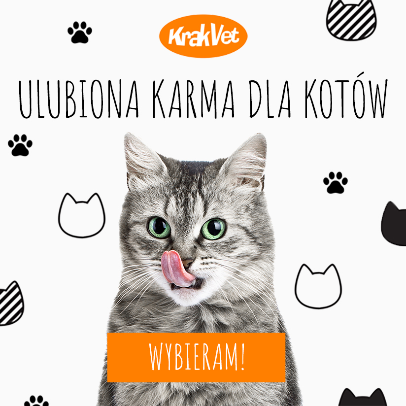 Ulubiona karma dla kotów