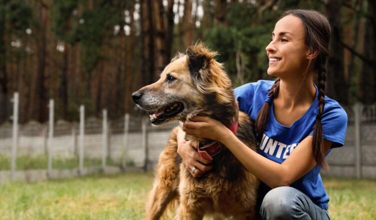 Ogólnopolski dzień praw zwierząt