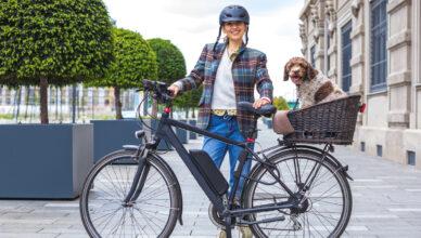 Jak bezpiecznie przewozić psa lub kota rowerem?