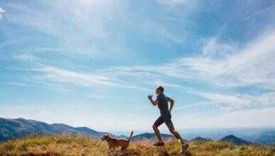 7 ras psów dla ludzi lubiących aktywność!